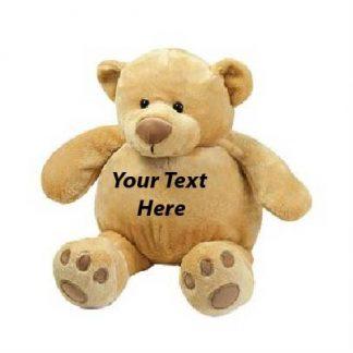 Teddy/PJ case